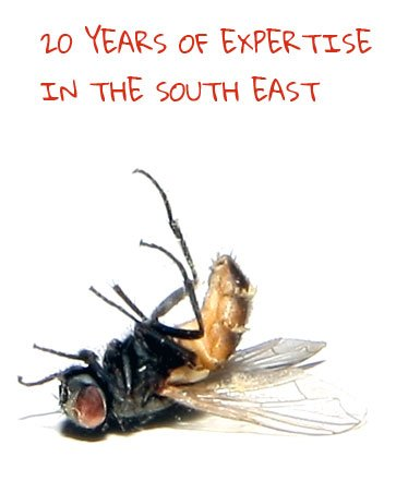 20 years of pest control in the south east